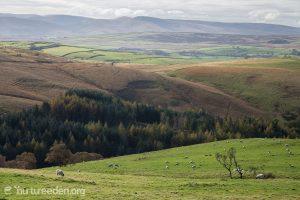Countryside around Alston